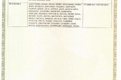 sertificat-vialona-cape-2-1